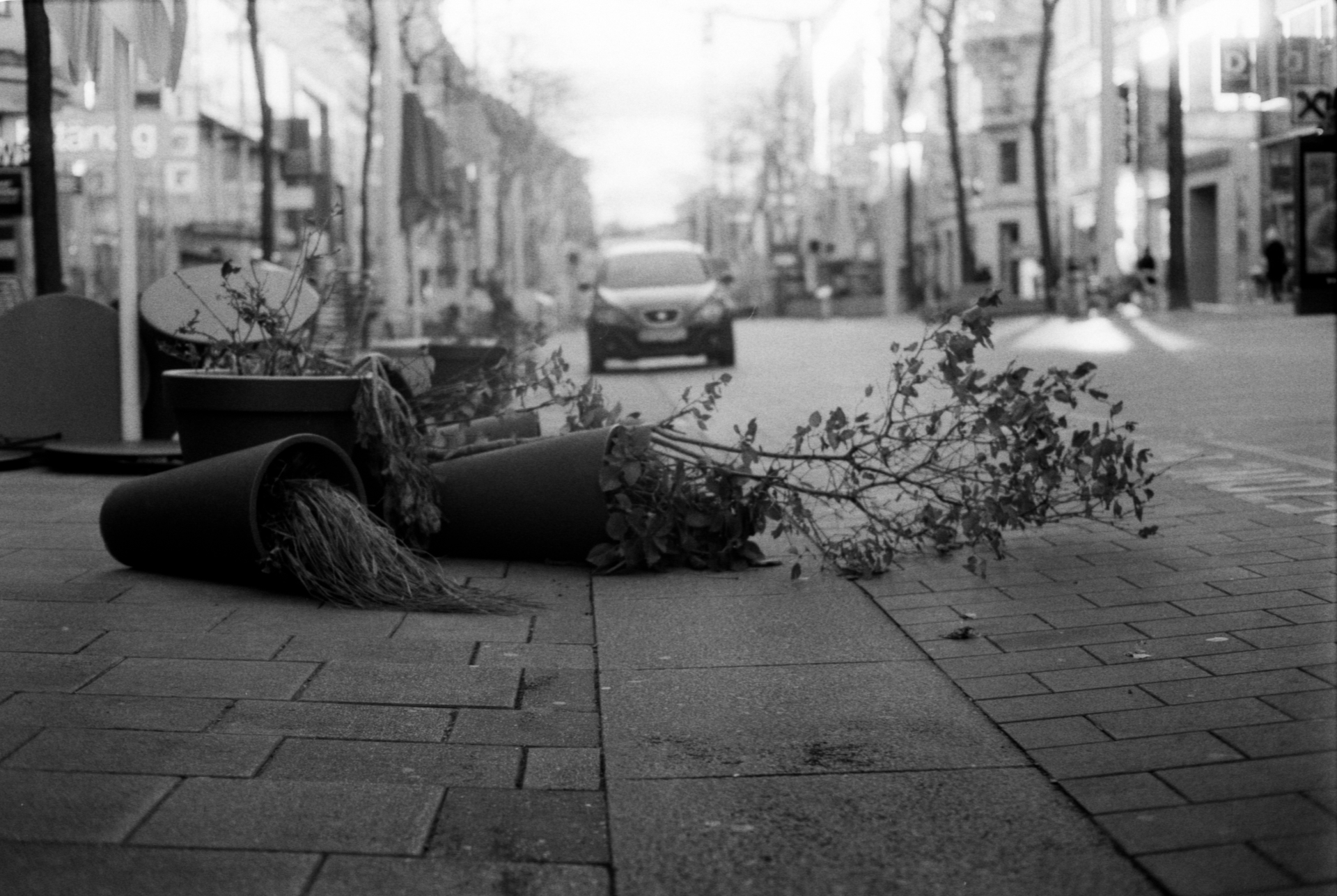 Stille Post Poetry Slam & Streets of Vienna