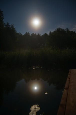 Moonshine in a lake